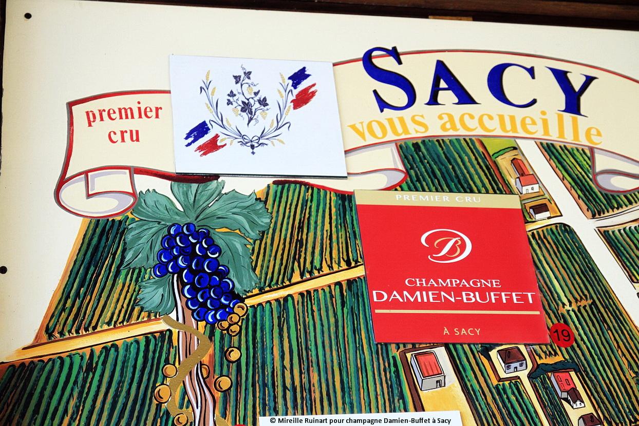 vendanges-champagne-damien-buffet-a-sacy96