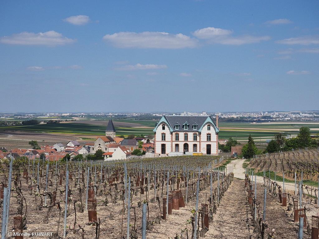 sacy vue vignes au dessus eglise et chateau villa maria